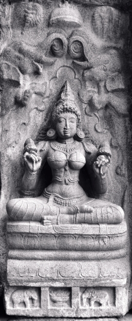 The Goddess of Harmony, Sri Lakshmi