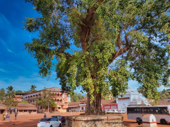 Devaki Krishna temple surroundings